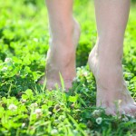 http://www.dreamstime.com/stock-photo-front-close-up-view-female-legs-stepping-green-grass-barefooted-image32871820